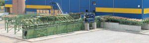 Xylo Services parc à grumes MTEC log yard