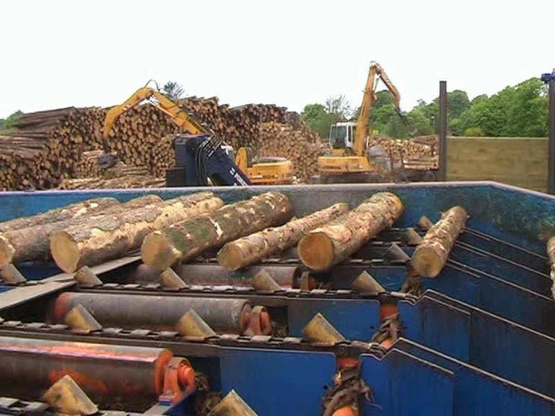 Logs yard